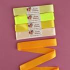 Набор атласных лент, 5 шт, размер 1 ленты: 25 мм × 5,4 ± 0,5 м, цвет жёлтый спектр