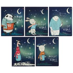 Notebook 48 sheets Magic night cage, coated cardboard cover, silver foil, Soft Touch lamination, MIX
