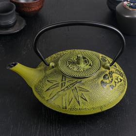 Чайник с ситом «Китайский сад», 1 л, зелёный, эмалированный внутри