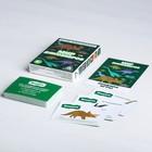 Игра-викторина «Мир динозавров» 5+, 50 карточек - фото 105602228