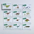 Игра-викторина «Мир динозавров» 5+, 50 карточек - фото 105602230