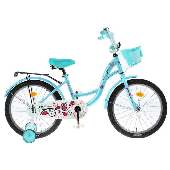 "Велосипед 20"" Graffiti Premium Girl RUS, цвет бирюзовый"