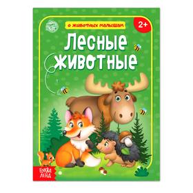 Книга «Лесные животные» 12 стр. *