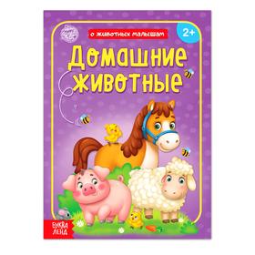 Книга «Домашние животные» 12 стр.