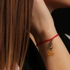"Charm bracelet ""the Red thread. Aquarius"" pendant, amber"