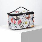 Cosmetic bag-trunk City 20*13*12 the division zipper, mirror, gray