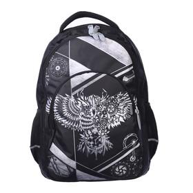 Рюкзак молодёжный, Calligrata, 44 х 30 х 17 см, эргономичная спинка, «Сова»