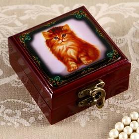 Шкатулка «Котёнок», 8х8 см