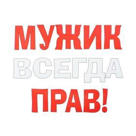Термонаклейка на листе «Мужик всегда прав», набор 10 шт., 21 × 29 см