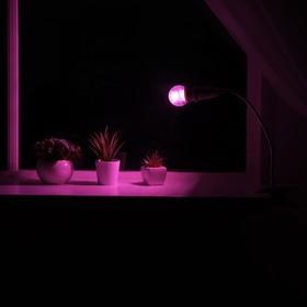 Светильник для растений на прищепке 9 Вт, 7 мкмоль/с, гибкая ножка 20 см, выкл на проводе