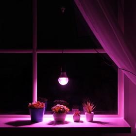 Светильник для растений 12 Вт, 10 мкмоль/с, провод 1,7 метра с выключателем, липучка на окно Ош