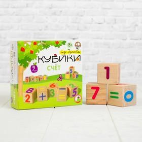 Кубики деревянные «Счёт» 9 шт.