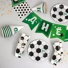 Набор бумажной посуды «С днём рождения, Футболист», 6 тарелок , 1 гирлянда , 6 стаканов, 6 колпаков - фото 105516831