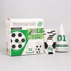Набор бумажной посуды «С днём рождения, Футболист», 6 тарелок , 1 гирлянда , 6 стаканов, 6 колпаков - фото 105516832
