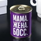 "Piggy Bank metal ""Stash for mom"" 7,5x9,5 cm"