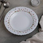 Тарелка суповая Fraisa rouge, d=20 см