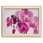 "The picture ""Pink Orchid"" - 15x20 cm (18х23см)"