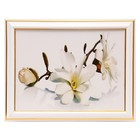 "The painting ""White Magnolia"" - 15x20 cm (18х23см)"