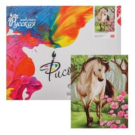 Картина по номерам «Сказочная лошадка» 40 × 50 см