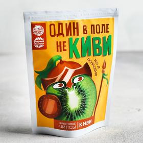 Фруктовые Чипсы картофельные «Один в поле не киви»: киви, 25 г