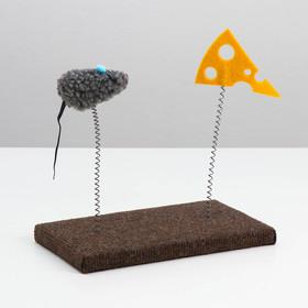 """Игрушка для кошек с дразнилками """"Мышь и сыр"""", 26 х 14,5 х 22 см  микс цветов"""