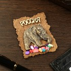 "Magnet ""Bear with raised paw"", wood, plaster, 7х9 cm"