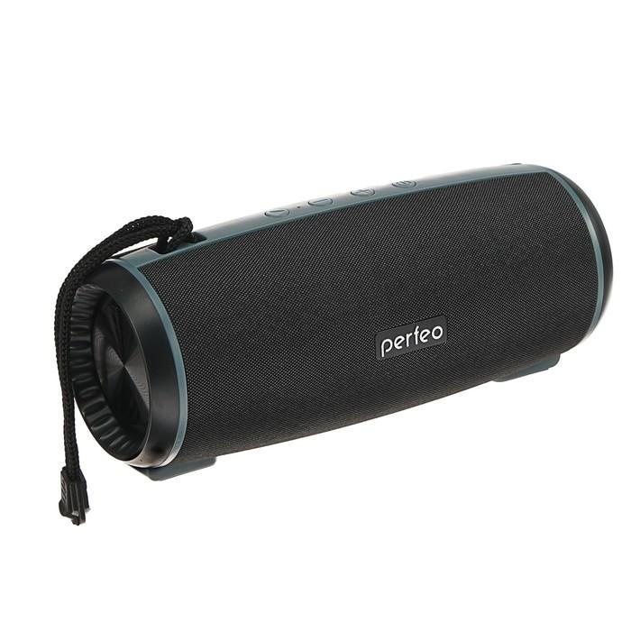 Портативная колонка Perfeo SHELL, FM, MP3, microSD, USB, AUX, 12 Вт, 2600 мАч, черная - фото 3689996