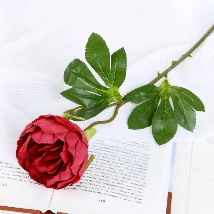 """Цветок искусственный """"Пышный пион"""" 7х47 см бордовый - фото 4455778"""
