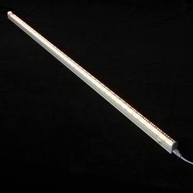 Светильник для растений светодиодный ФитЛето, 30Вт, 1150мм., IP40, 220В, с выкл., фотосинтез