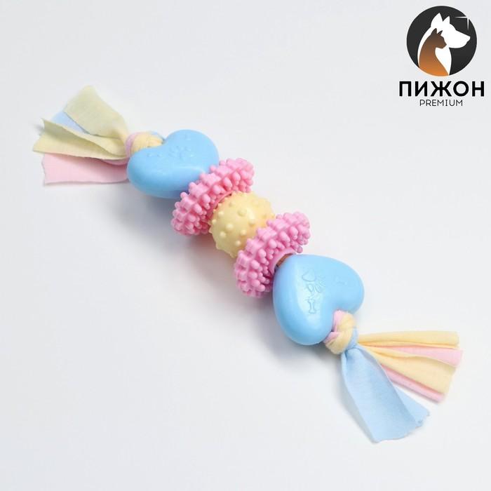 Игрушка жевательная Пижон Premium на верёвке, 5 элементов, термопластичная резина, микс
