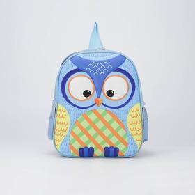 Рюкзак школьный, отдел на молнии, 2 боковых кармана, цвет голубой, «Сова»