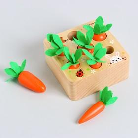 Развиваюший набор «Посади разные морковки» 12,5×12,5×5,5 см