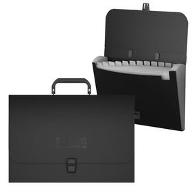 Папка-портфель А4, 12 отделений, 1000 мкм, ErichKrause Megapolis, до 350 листов, чёрная