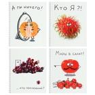 Тетрадь 48 листов в клетку, на гребне Crazy Fruits, мелованный картон, ВД-лак, микс
