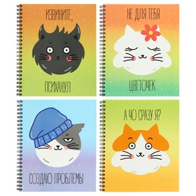 Notebook 48l cl on the crest of Kotana 2 chalk cards choice UV varnish 3019-48, mix
