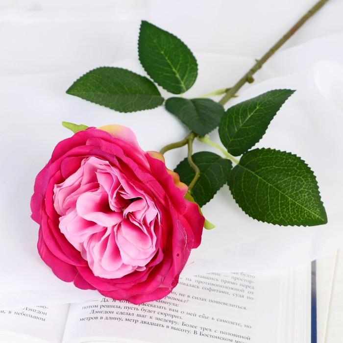 """Цветок искусственный """"Роза Прима"""" 11х45 см бордово-розовый - фото 798471796"""