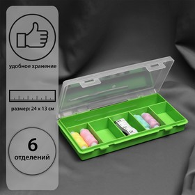 Органайзер 24 × 13 × 3,5 см, 6 отделений, цвет МИКС