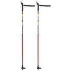Палки лыжные стеклопластиковые (100 см), цвет микс