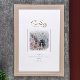 Gallery plastic photo frame 20x30 cm dairy