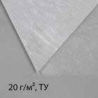Материал укрывной, 5 × 3,2 м, плотность 20, с УФ-стабилизатором, белый, Greengo, Эконом 20%