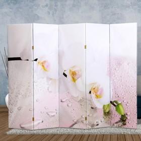 """Ширма """"Орхидея и капли воды"""", 250 × 160см"""