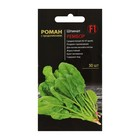 """Seeds Spinach """"Rember"""" F1, 50 PCs"""