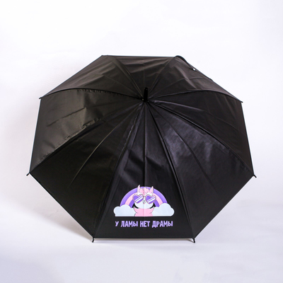 "The umbrella-cane ""the Lama no drama"", 6 spokes"