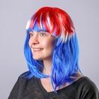 "The wig ""Medium Mix"" Blue-red / 1 piece/ 149-M"