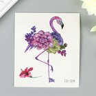 """The tattoo on the body colour of """"Flamingo with succulents"""" 8х7,5 cm"""