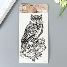 "Татуировка на тело чёрная ""Сова с розами"" 20х10 см"