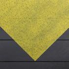 Материал укрывной, 1,6 × 12 м, плотность 60, с УФ-стабилизатором, песочный, «Спанграм»