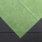 Материал укрывной, 1,6 × 6 м, плотность 60, с УФ-стабилизатором, салатовый, «Спанграм»