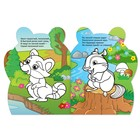 Раскраски с наклейками «Свинка и енотик», 2 шт. по 12 стр. - фото 105683375