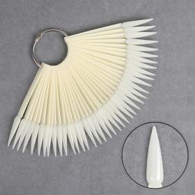 Палитра для лаков на кольце, 40 ногтей, цвет «слоновая кость»